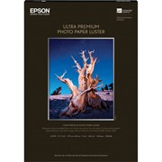 Epson A3+ Premium Luster Signature Worthy Paper 250gsm 50 Sheets