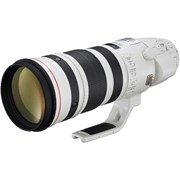 Canon EF 200-400mm f/4 IS USM w/ 1.4x Extender