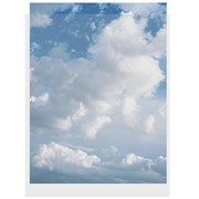 Clear File 8x10 Inch (100 Pack)