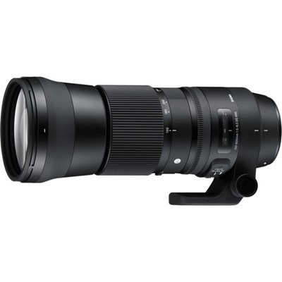 Product: Sigma 150-600mm f/5-6.3 DG OS HSM Contemporary Lens: Nikon F